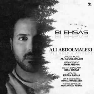 دانلود آهنگ جدید  بی احساس علی عبدالمالکی + متن آهنگ